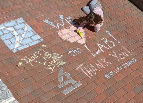 chalk drawing - We love the lab!